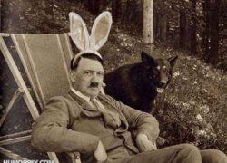 Hitlerot